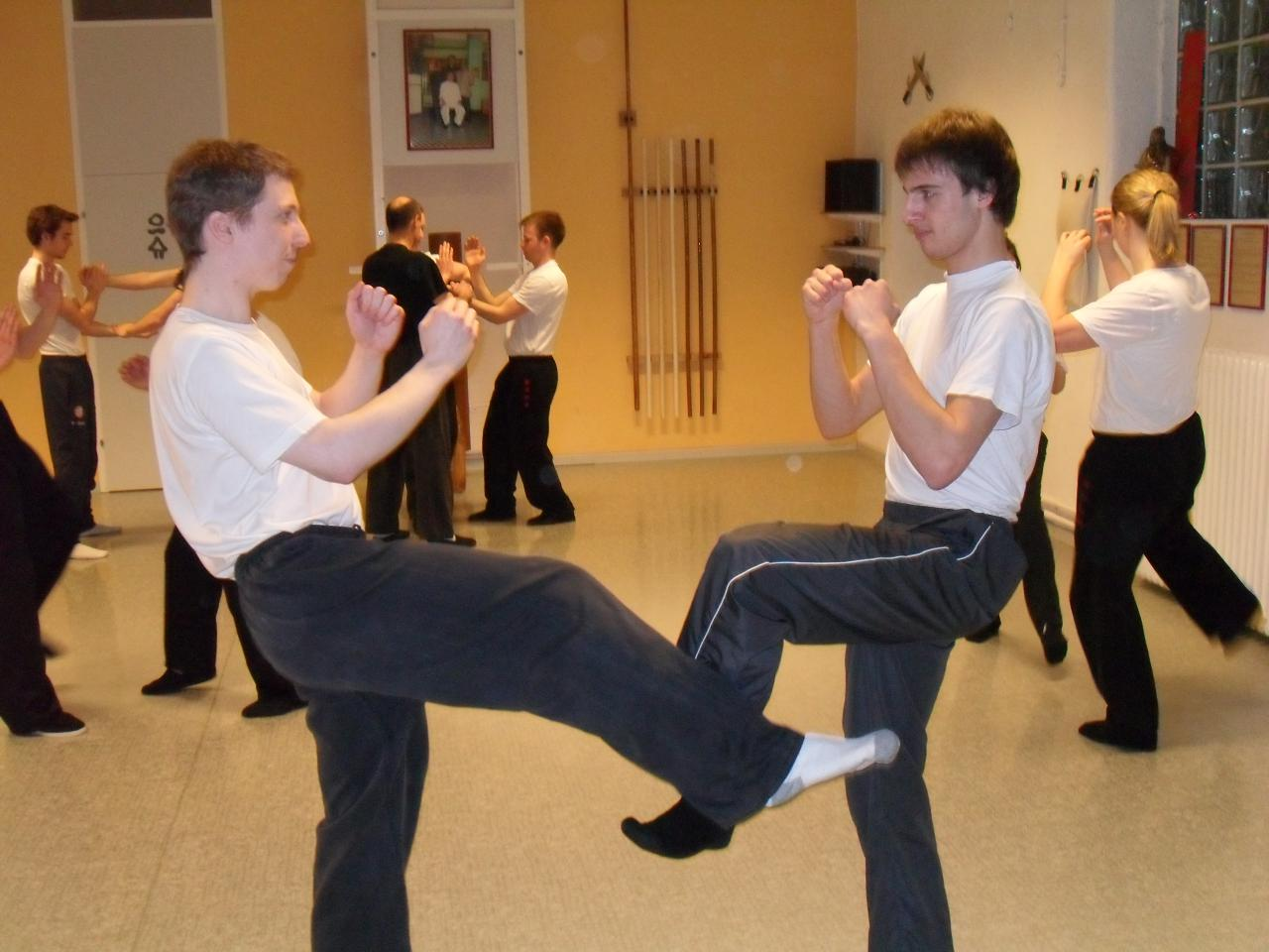 trainingwingchun11