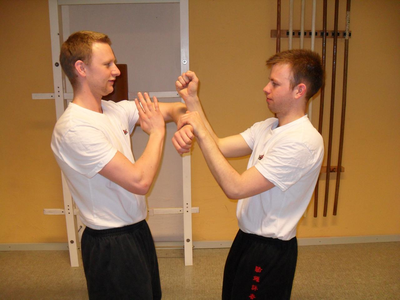 trainingwingchun13