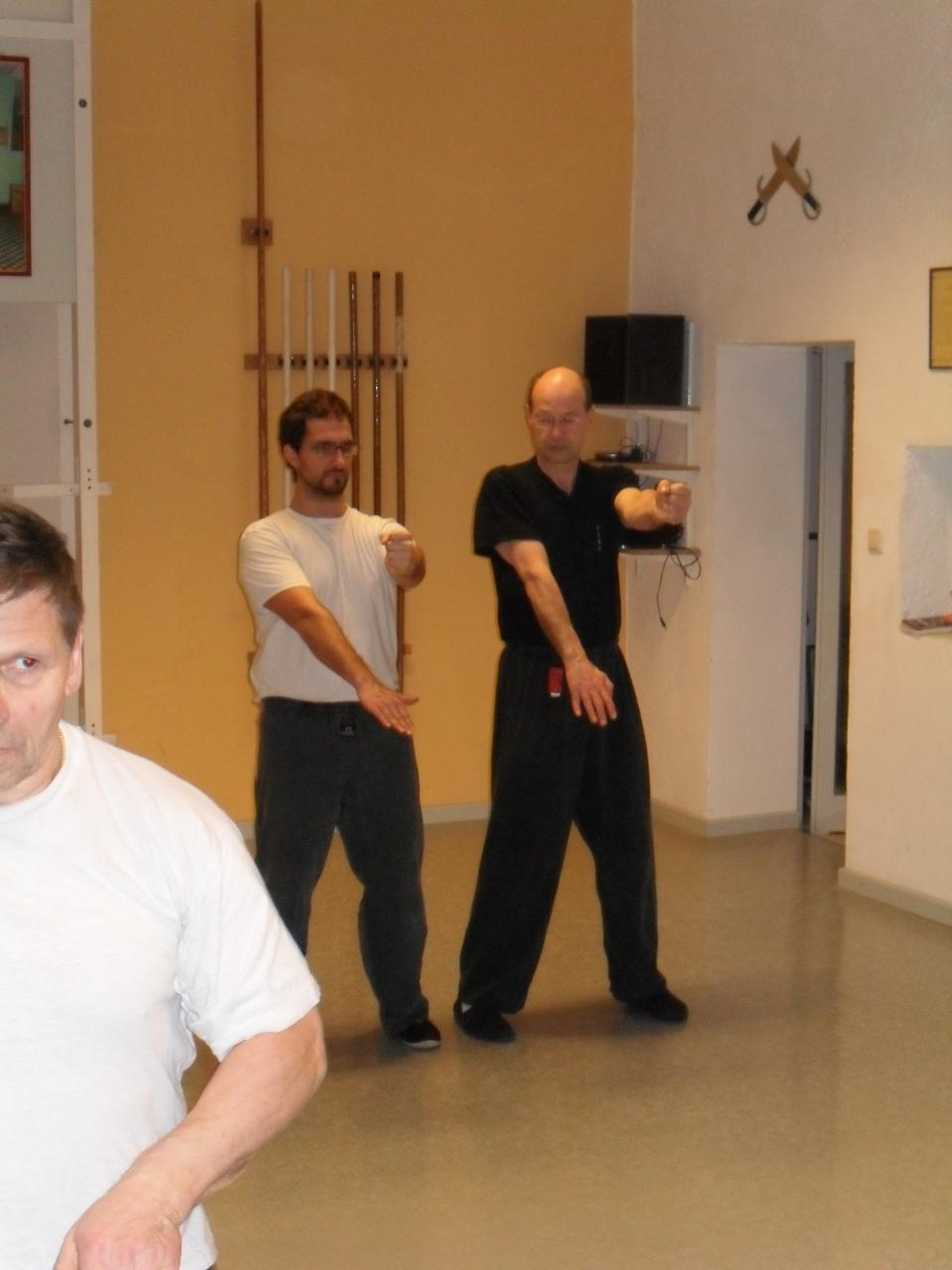 trainingwingchun29